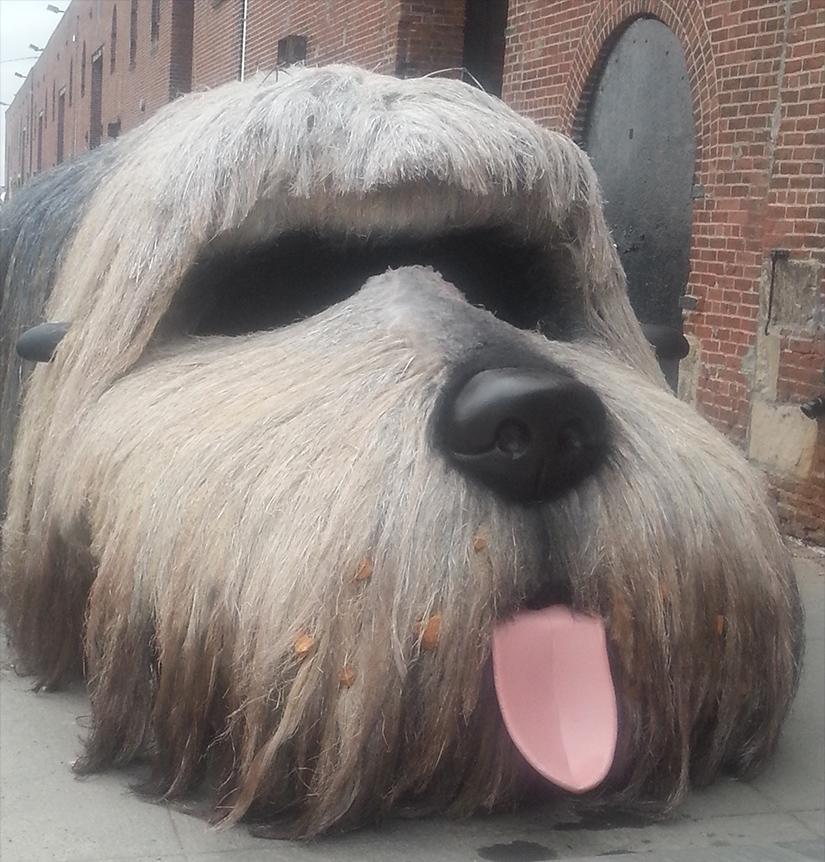 Febreze Dog Car